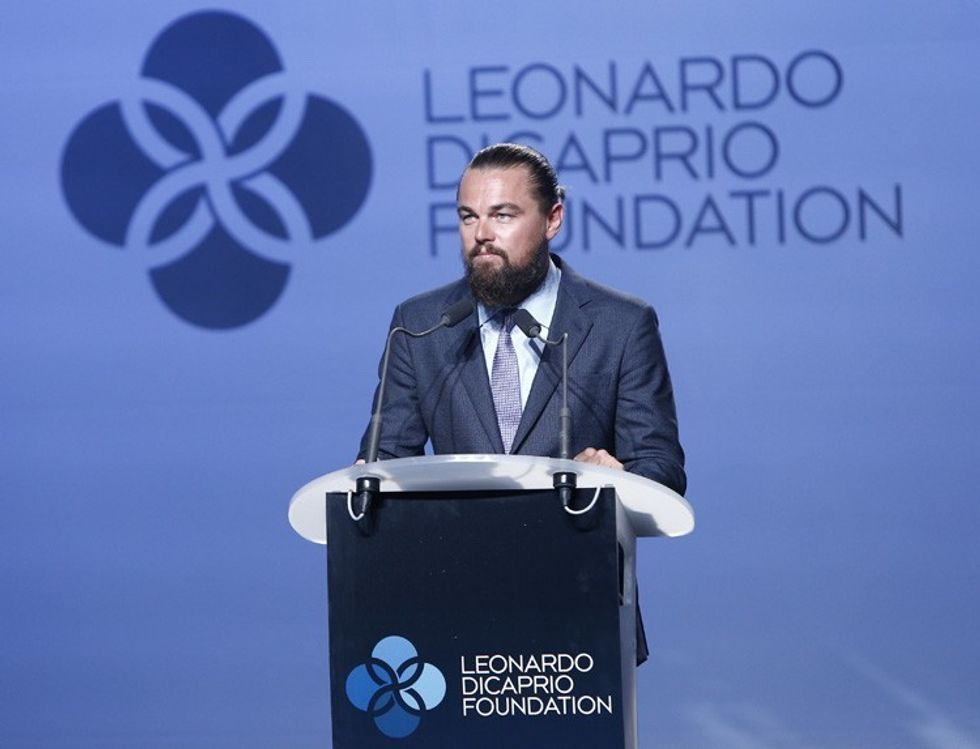 Leonardo DiCaprio Foundation's Annual Gala to Fund Climate and Biodiversity Projects