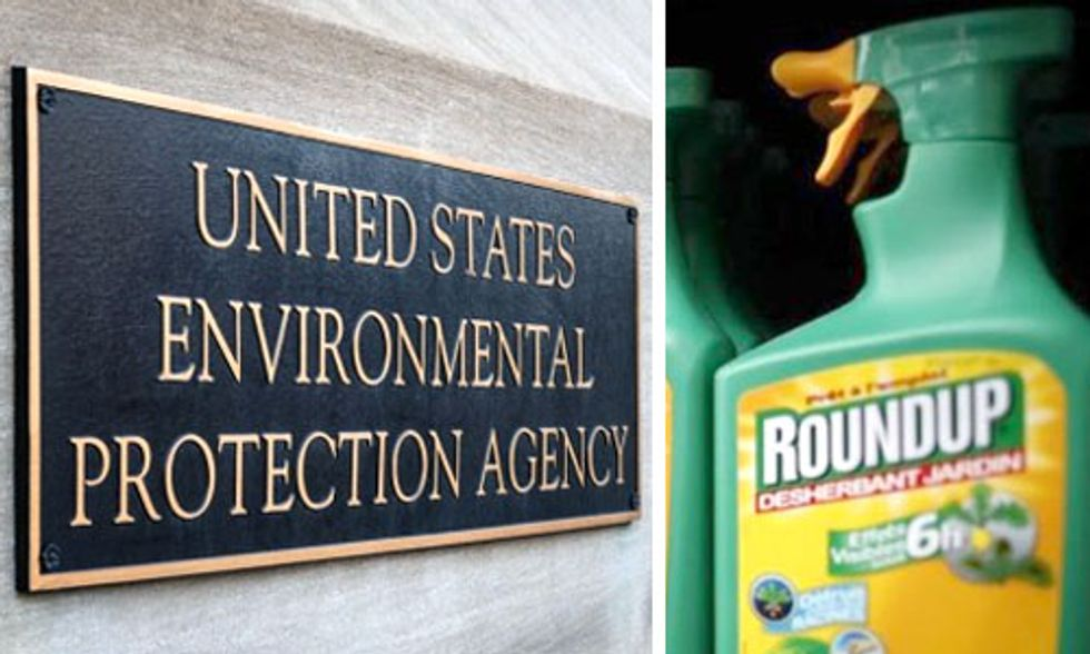 'Mistaken' Release of Glyphosate Report Raises Questions Over EPA's Ties to Monsanto