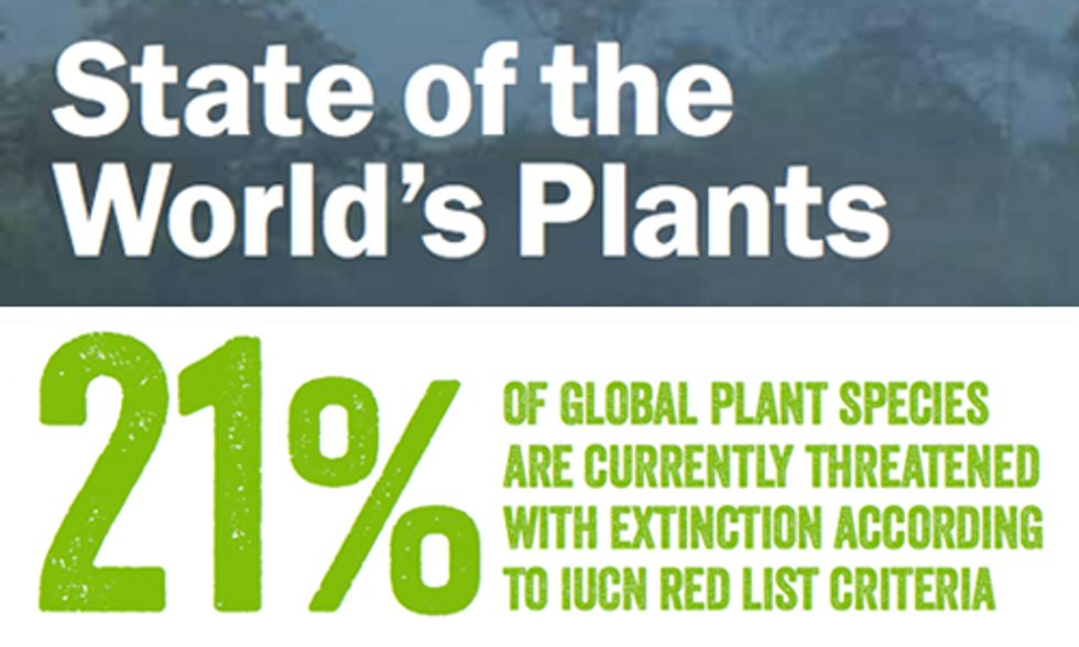 One in Five of World's Plant Species at Risk of Extinction