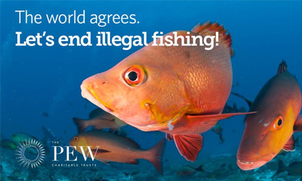 The World Agrees: Let's End Illegal Fishing
