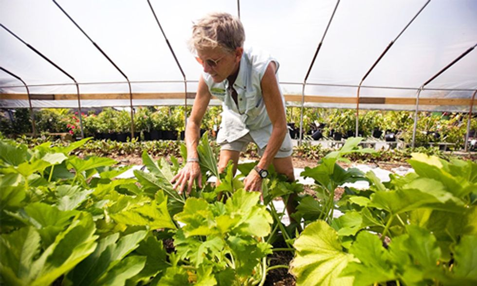 17 Farmers Doing Much More Than Putting Food on Your Plate