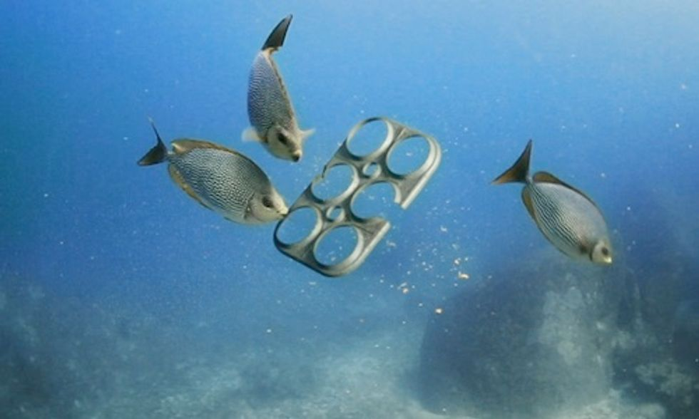 First Ever 100% Edible Six-Pack Ring Feeds Marine Animals Instead of Killing Them