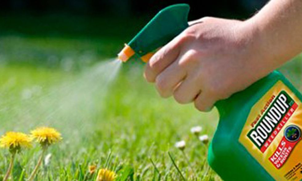 Glyphosate Found in Urine of 93 Percent of Americans Tested