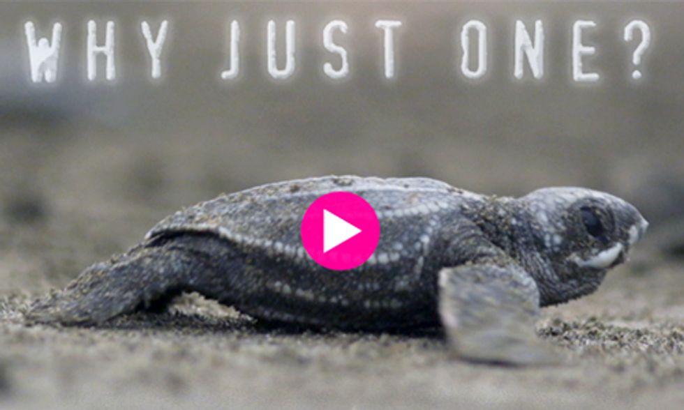 Help Save the World's Last Dinosaur