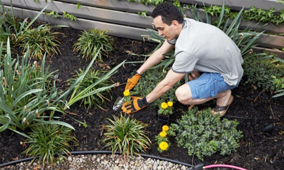 12 Ways to Get Rid of Weeds Without Using Roundup