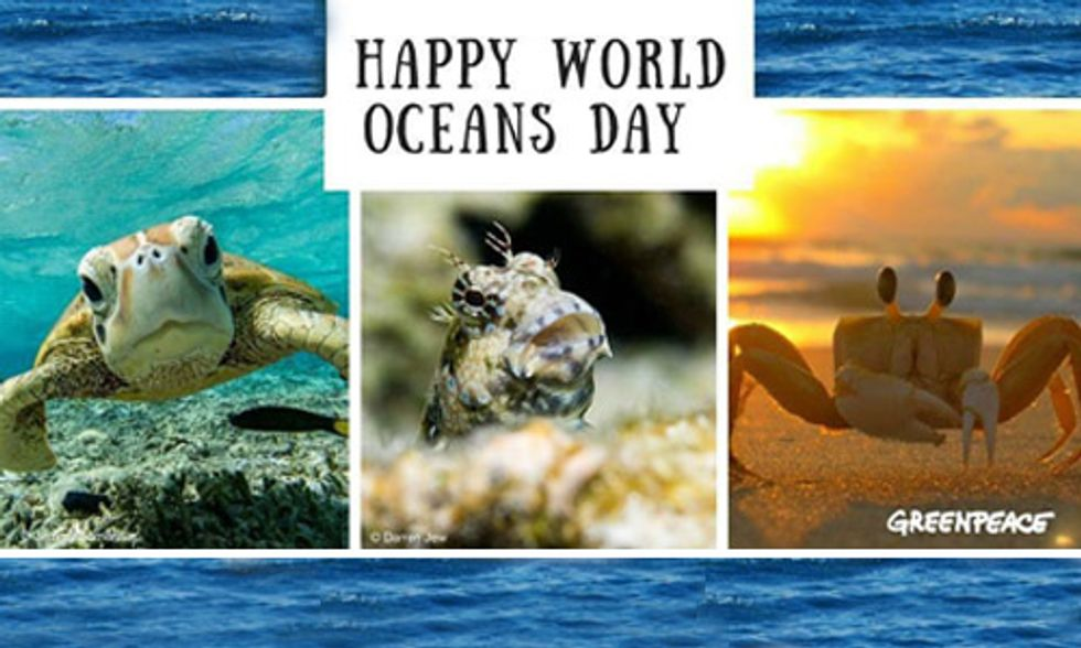 World Oceans Day: Healthy Oceans = Healthy Planet