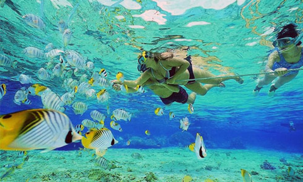 11 Best Snorkeling Spots in America