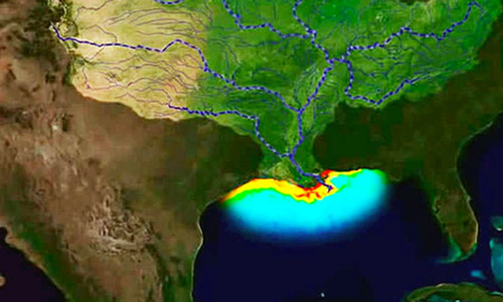 There's Nothing Average About This Year's Gulf of Mexico 'Dead Zone'