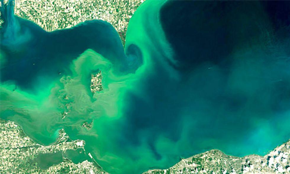 Lake Erie's Toxic Algae Bloom Forecast for Summer 2016