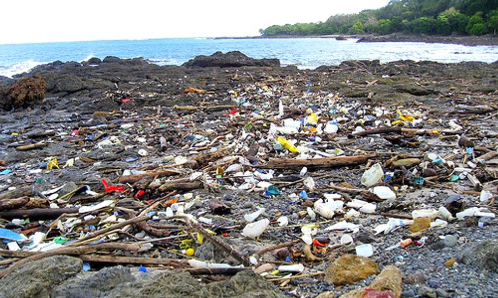 80% of Ocean Plastic Comes From Land-Based Sources, New Report Finds