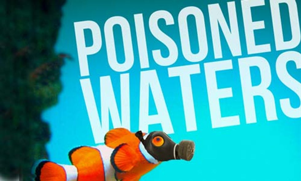 6 Million Tropical Fish Imported Into U.S. Each Year Are Exposed to Cyanide Poisoning