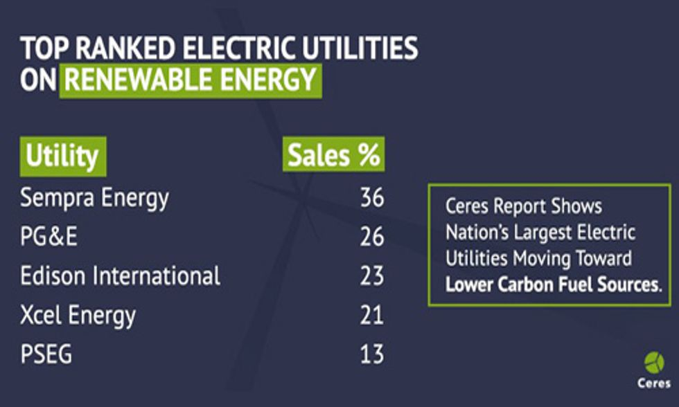 30 Largest Electric Utilities Ranked on Advances in Renewable Energy and Efficiency