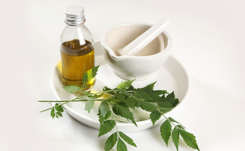 3 Reasons Why You Should Use Neem Oil on Your Skin