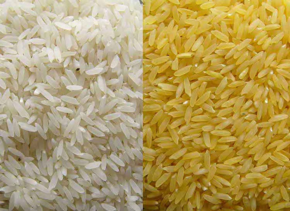 Greenpeace to Nobel Laureates: It's Not Our Fault Golden Rice Has 'Failed as a Solution'