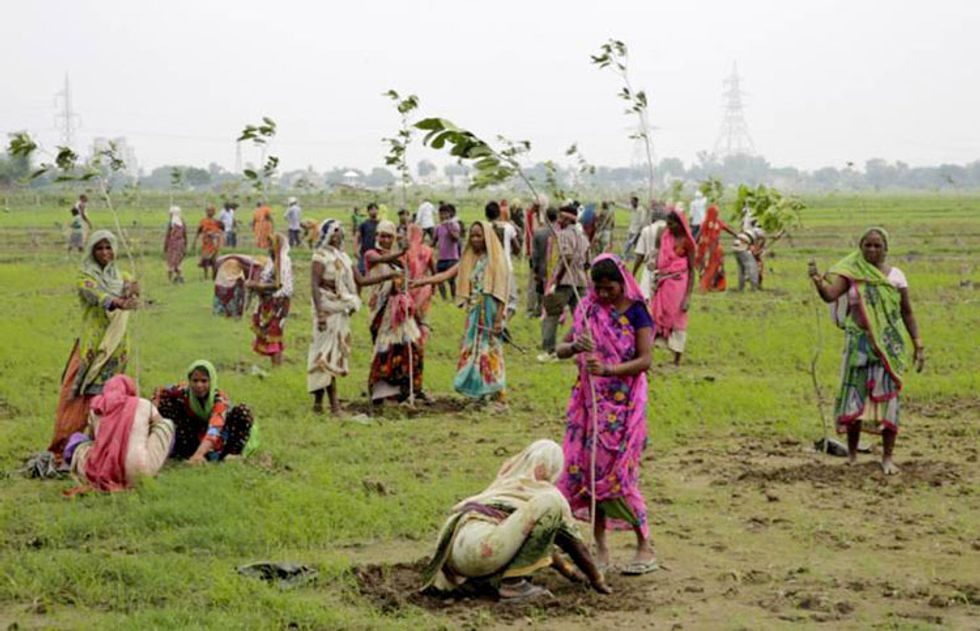 800,000 People Attempt to Plant 50 Million Trees to Break Guinness World Record