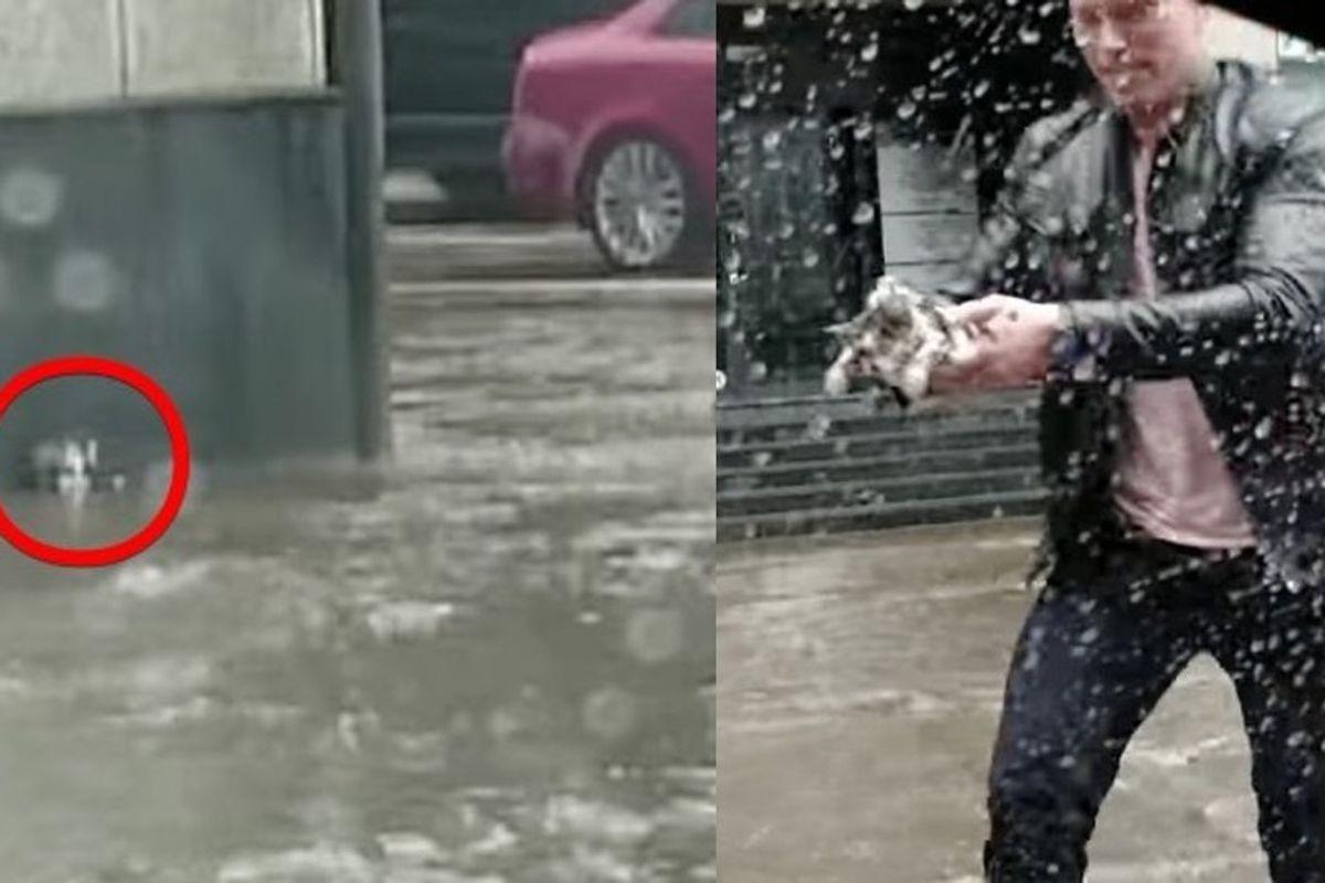 Heroic Man Rescues Kitten Stranded in Flood Waters
