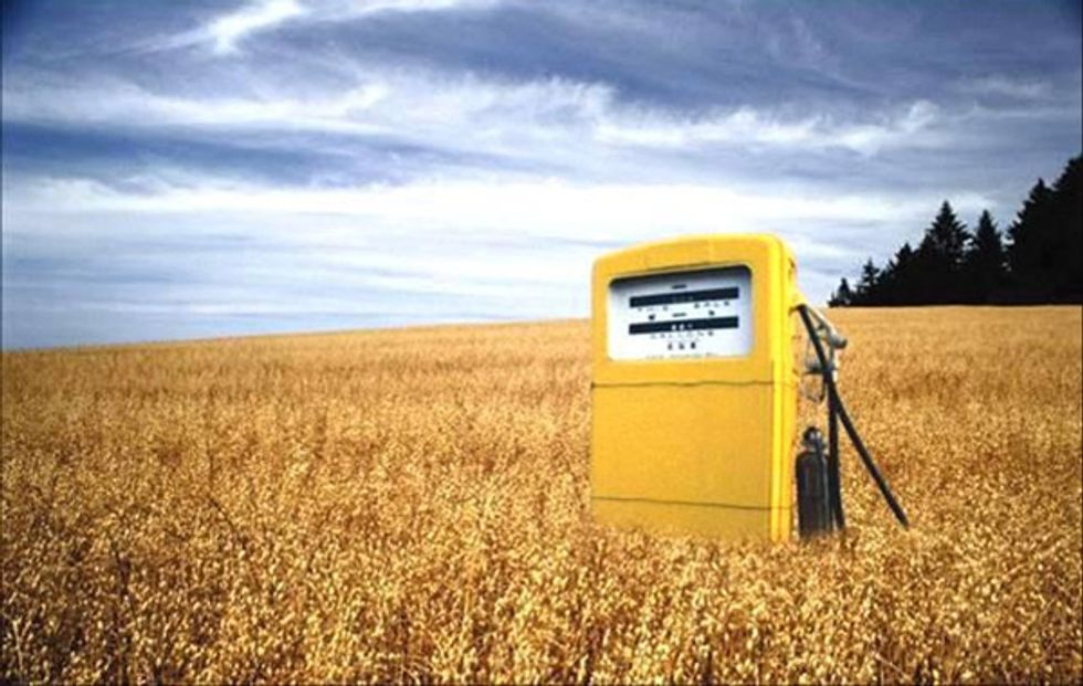 What Role Can Biofuels Play in Reducing Greenhouse Gas Emissions?