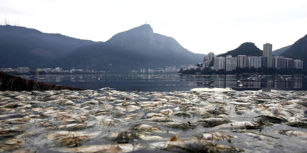 The Rio Olympics: Superbugs, Sewage and Scandal