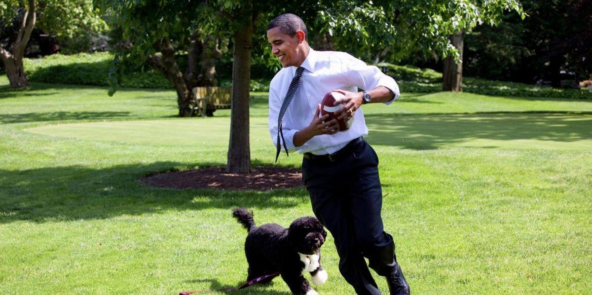 Barack Obama Pens a Heartfelt Essay on Feminism