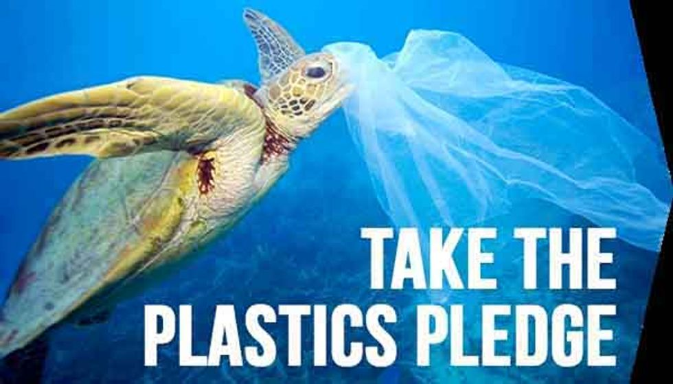 6 Plastic Bag Bans Making a Huge Difference