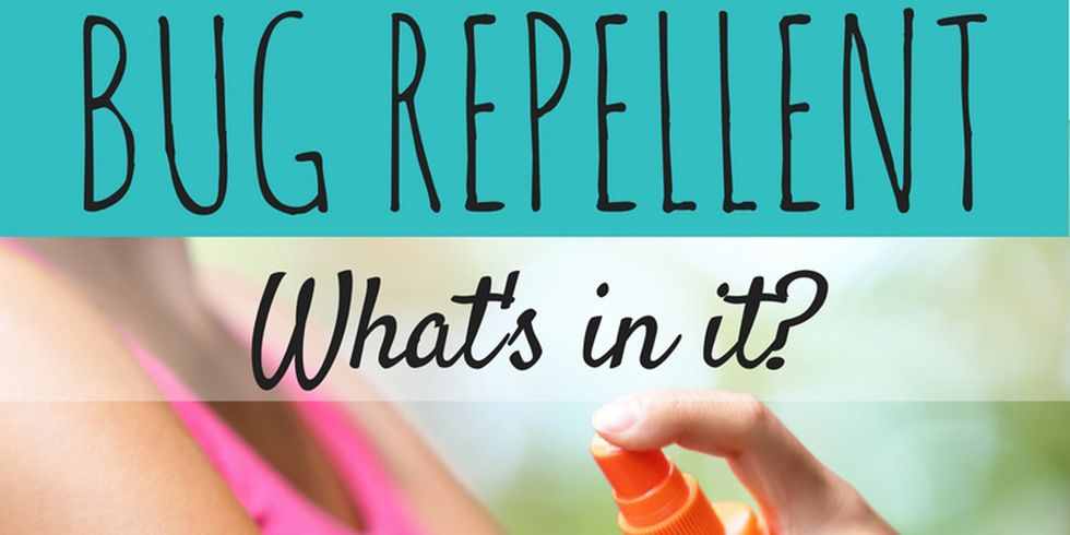6 Things You Should Know About Bug Repellent