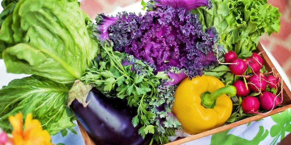 Is Eating a Raw Diet Healthy?