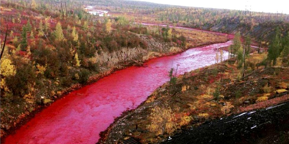 Russian River Turns Red After Suspected Chemical Spill