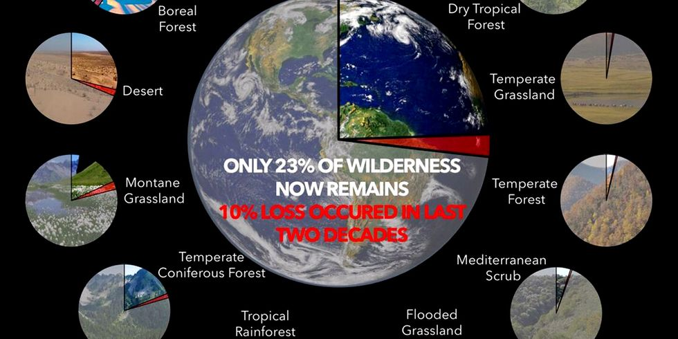 Humans Destroyed 10% of Earth's Wilderness in Just 20 Years