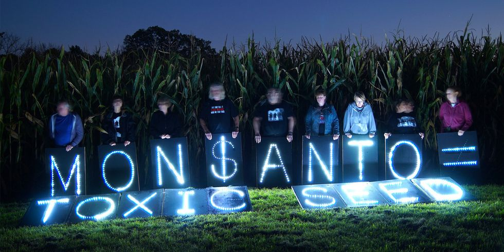 Monsanto and the Poisonous Cartel of GMOs in India