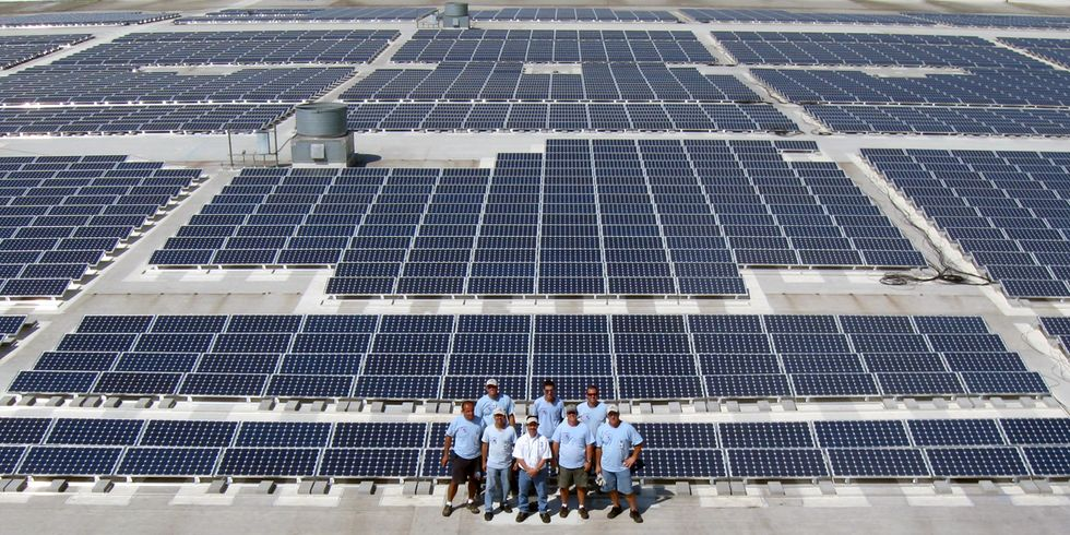 Solar Supporters: Florida's Amendment 1 Is a 'Wolf in Sheep's Clothing'
