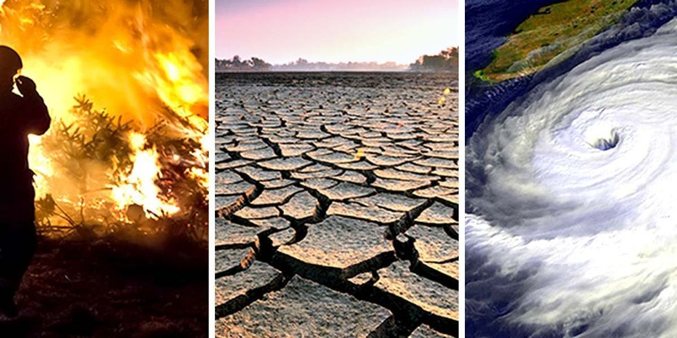 Earth Could Reach Critical Climate Threshold in a Decade, Scientists Warn