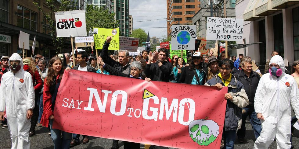 Bayer-Monsanto Merger a '5-Alarm Threat to Our Food Supply'