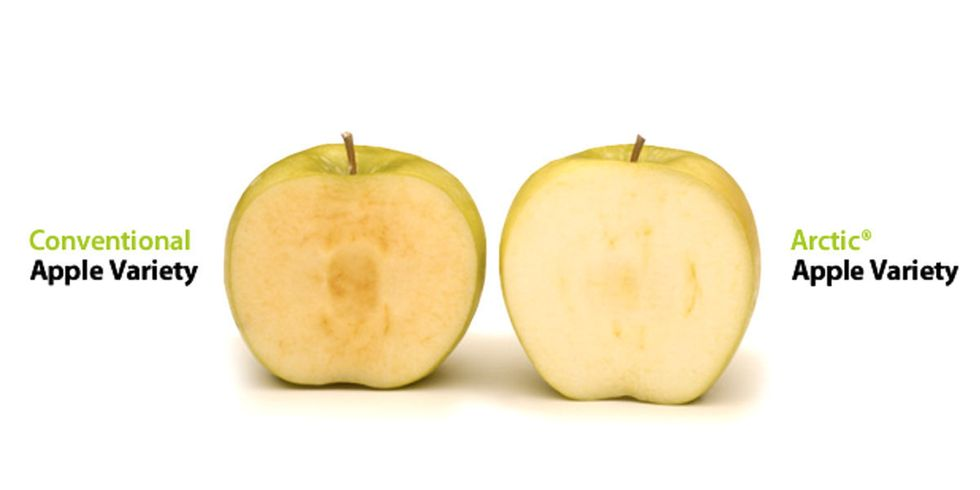 Third GMO Arctic Apple Gets USDA Approval