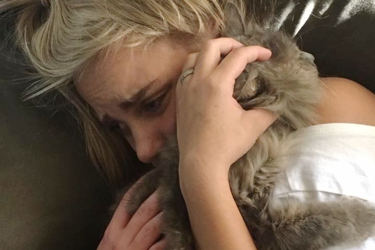 Woman's Search for Her Missing Cat Helps Reunite Another Lost Cat with Her Humans