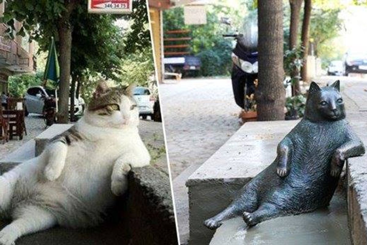 Iconic Laid-back Cat Immortalized with His Own Statue at His Favorite Spot