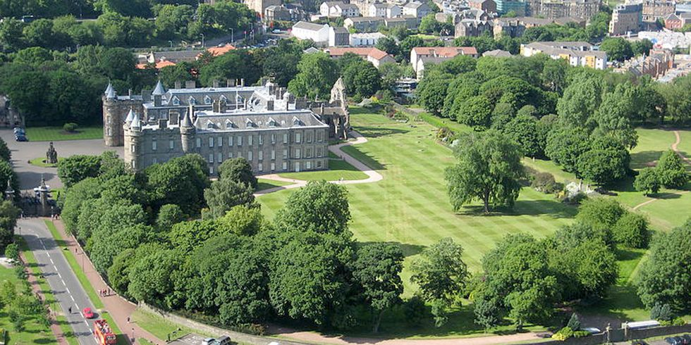 Trees Believed 'Extinct' for 20 Years Discovered in the Queen's Garden