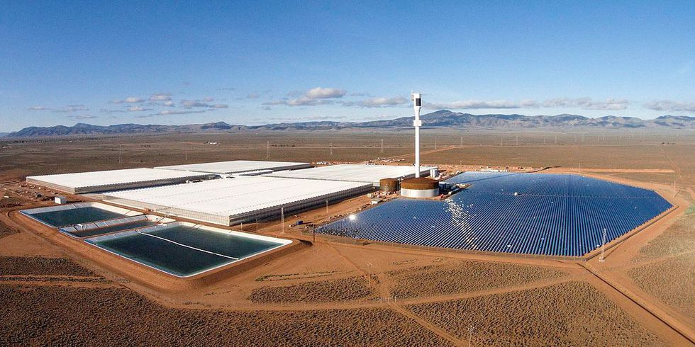 World's First Farm to Use Solar Power and Seawater Opens in Australia