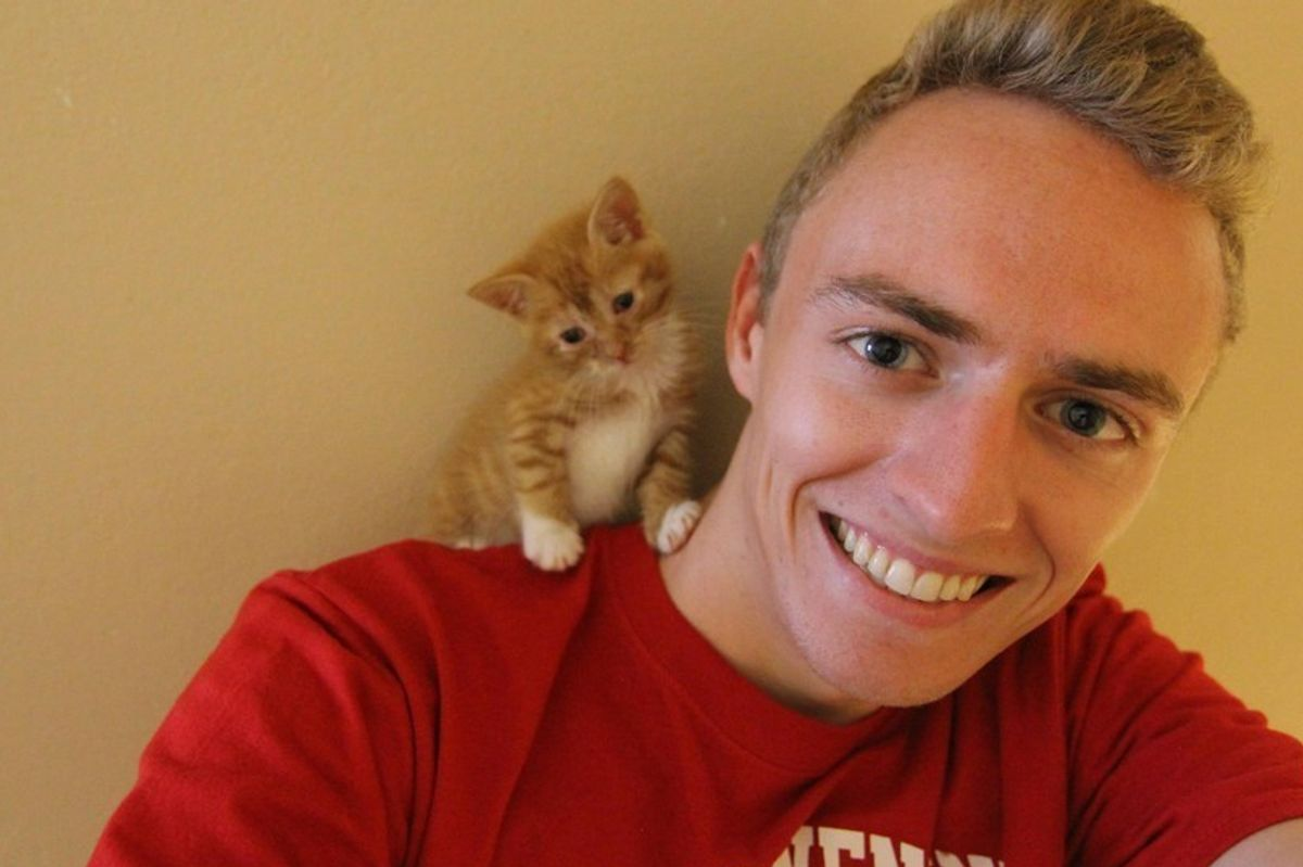 Man Saves Crying Kitten Found on His Doorstep, the Kitty Wouldn't Let Him Go