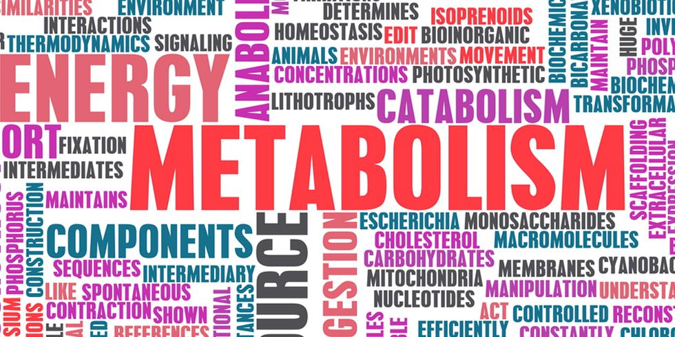 6 Ways You Might Be Slowing Your Metabolism