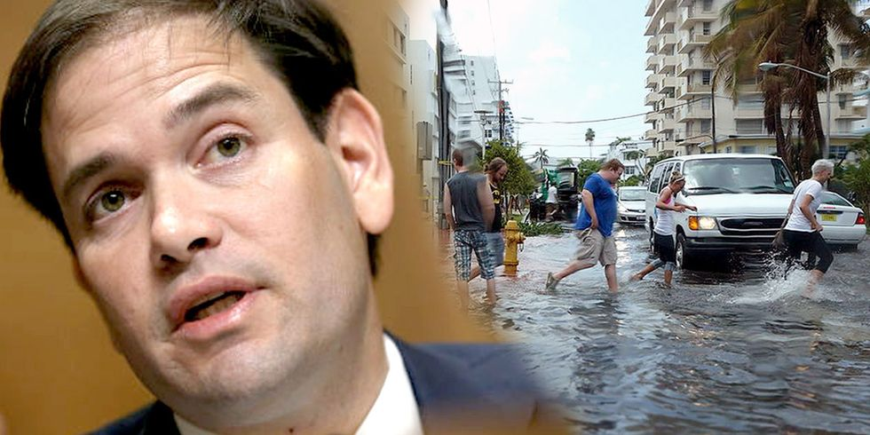 Marco Rubio Once Again Denies Climate Change as Florida's King Tides Inundate Streets