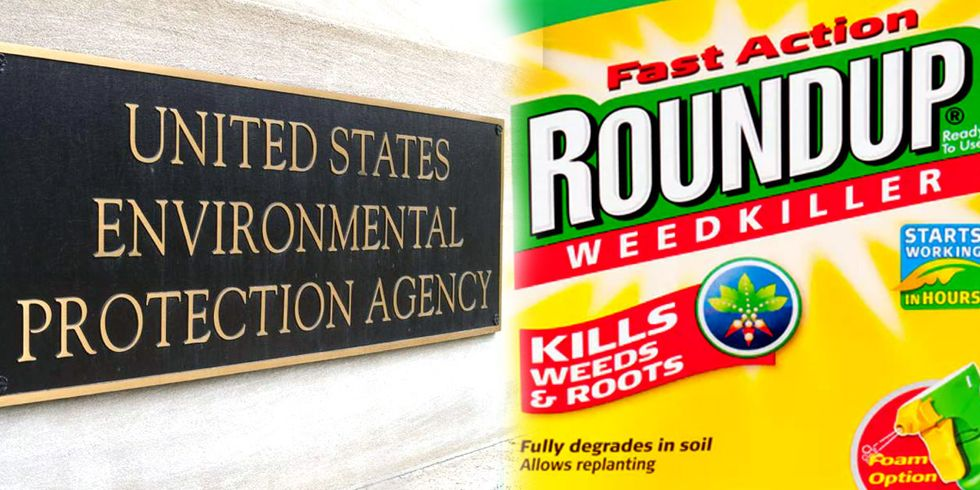 EPA Bows to Industry in Delay of Glyphosate Cancer Review