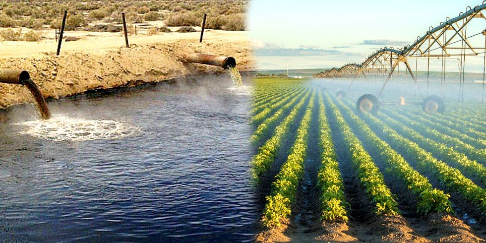 Why Are California Farmers Irrigating Crops With Oil Wastewater?