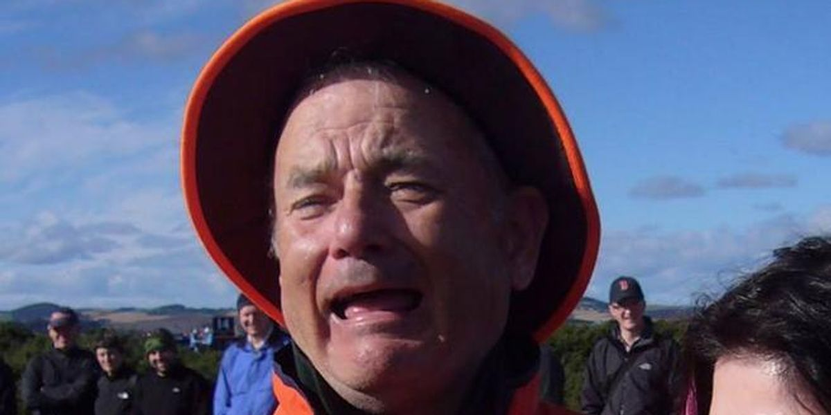 Is This Bill Murray Or Tom Hanks?