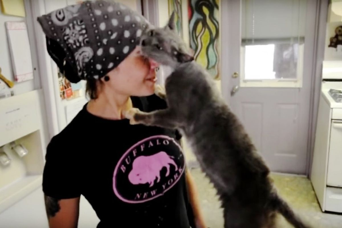 Cat Grew Up in Cage is Given Freedom and Love, She Can't Stop Thanking Her Rescuers