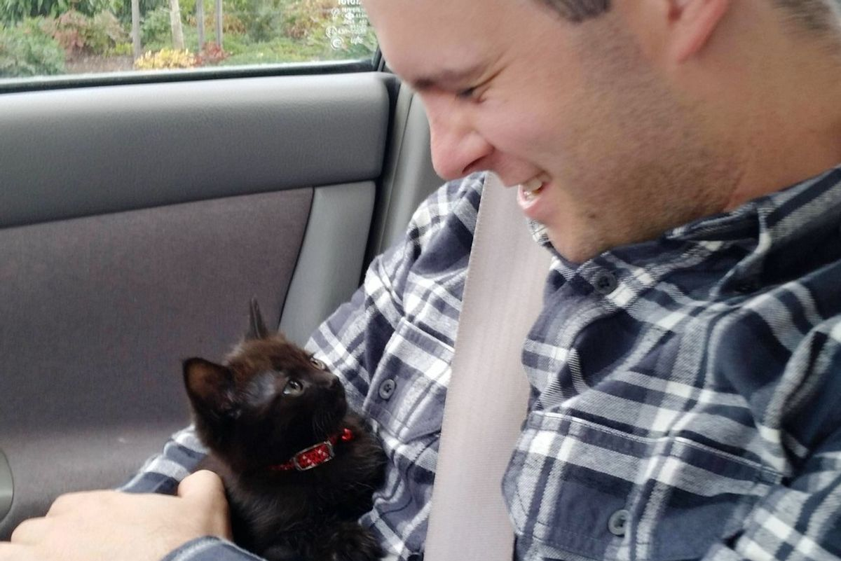 The Joy When This Guy is Chosen by a Tiny Kitten... (with Updates)
