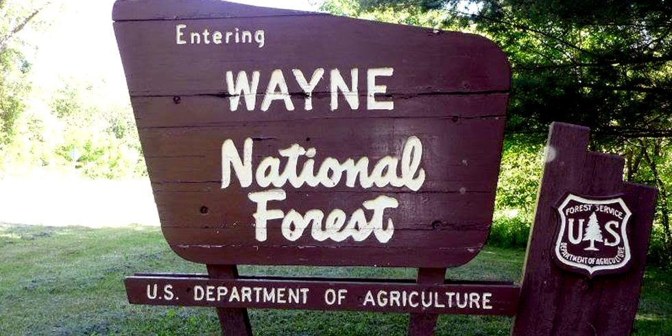 Feds to Auction Off Ohio's Only National Forest to Fracking