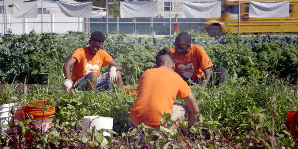 Connecting Health and Hunger in Brooklyn and Beyond