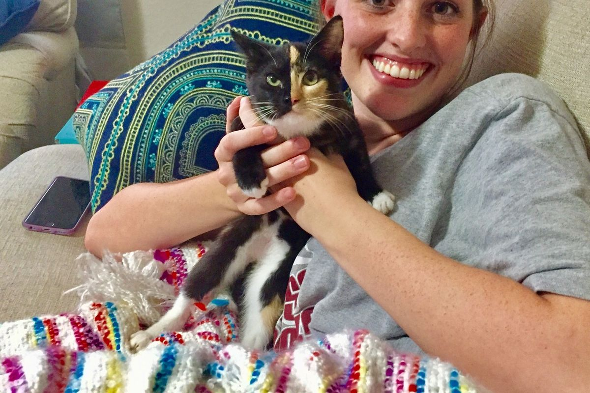Man Brought Kitten with No Mom to Comfort His Wife Who Had a Miscarriage