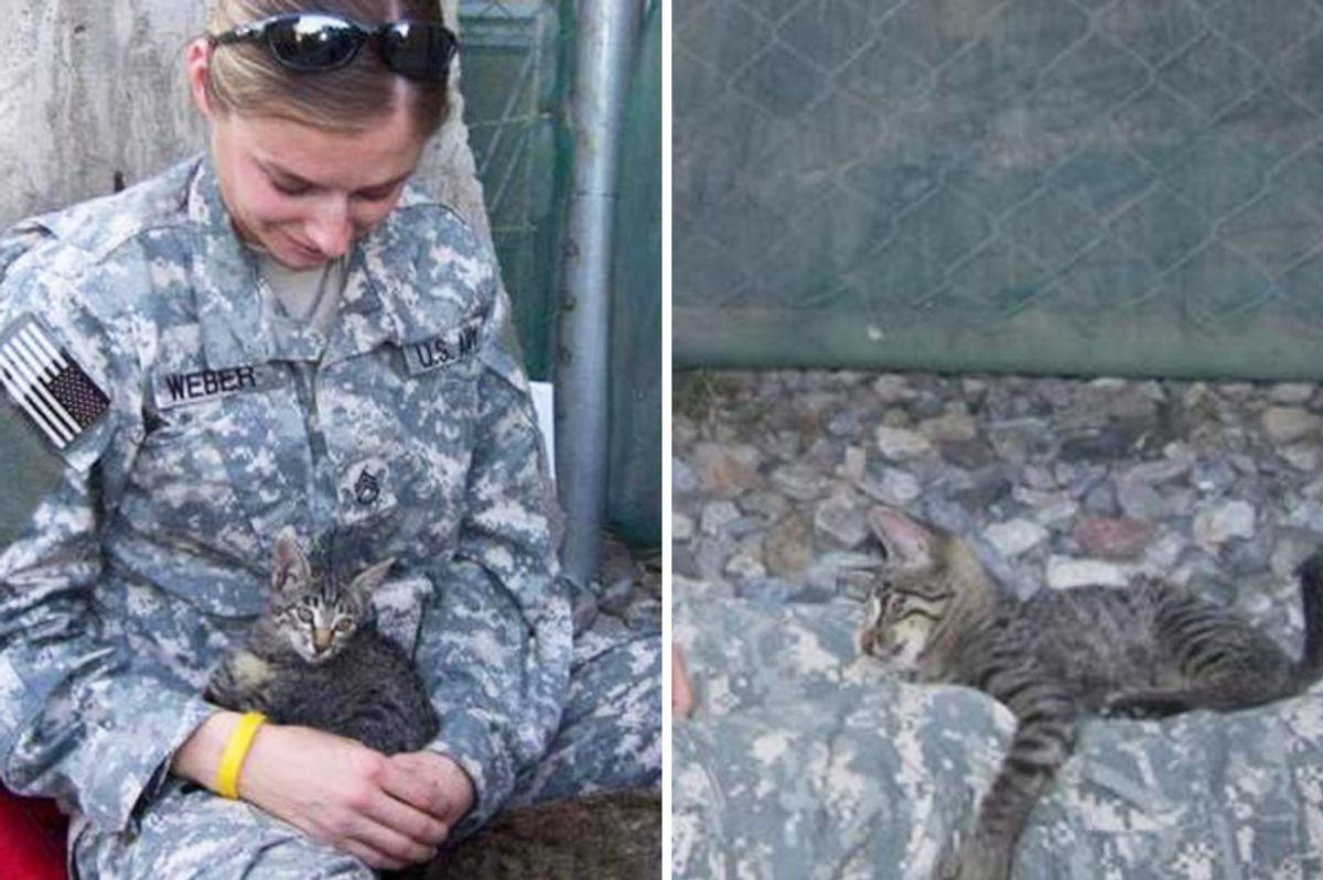 Soldier Refuses to Leave Special Needs Kitten Behind...