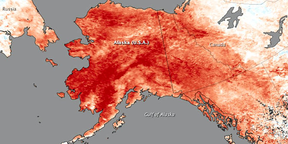 Alaska Sees 'Astounding' Rise in Temperature as 'Drill, Baby, Drill' Planned for Arctic